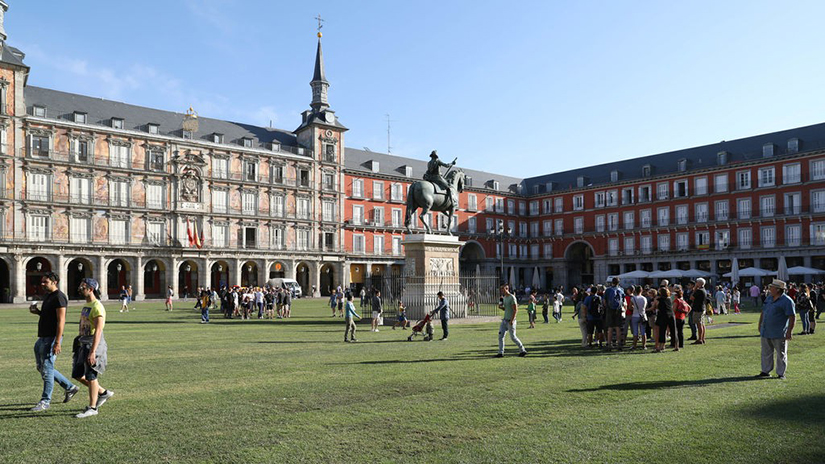 plaza_mayor_cesped